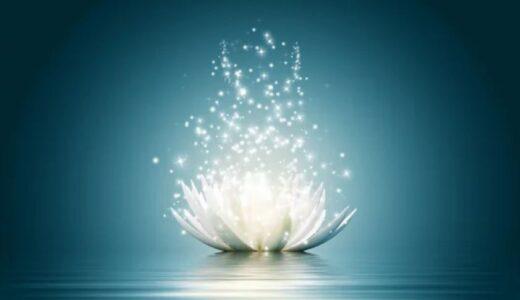瞑想・ヒーリングで真の幸福を得るための心構えと手順。苦悩の解放だけでなく、この無常の世界でいかに愛と慈悲を発揮するかを内観すること。(『Happiness 幸福の探求』ブックレビューその5)